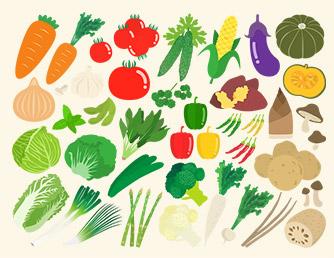 繊維 食品 食物